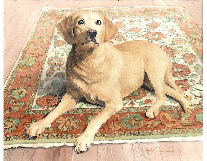 Yellow Lab on rug by Mike Theuer