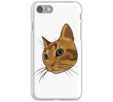 Cat (Hubert) iPhone Case/Skin