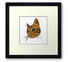 Cat (Hubert) Framed Print