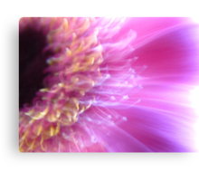 Pink blink Canvas Print