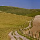 Downland Ride by mikebov