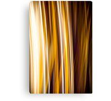 Live Fire Stripes Canvas Print