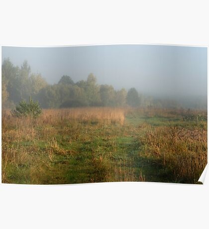 Rural pathway in foggy day at autumn  Poster