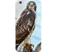 Red Tail Hawk iPhone Case/Skin