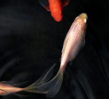 Koi fish #2 by Erika Gouws