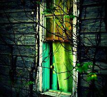 peeping beauty by nessbloo
