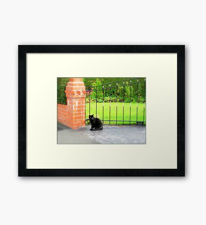 Sat by the gate Framed Print