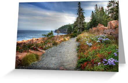 Coastal Meandering by Lori Deiter