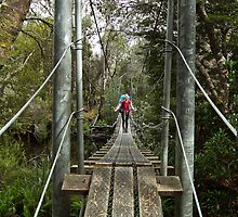 Returing across the rope bridge from Frenchmans Cap, Tasmania by andychiz