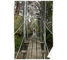 Returing across the rope bridge from Frenchmans Cap, Tasmania Poster