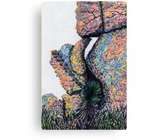 c5-Cliff Boulders at Cochise Stronghold Canvas Print