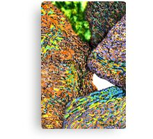 c7-Bright Boulders Upclose Canvas Print