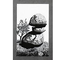 Boulders with Live Oak Tree Photographic Print