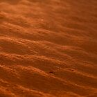 Red Sand - Ripples in the sand by Alex Colcheedas
