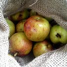 apples in a sack by impossiblesong
