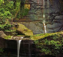 Sydney Waterfalls - Willoughby Falls #3 by vilaro Images
