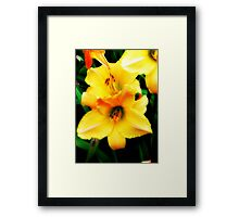 Nature's Beauty © Framed Print