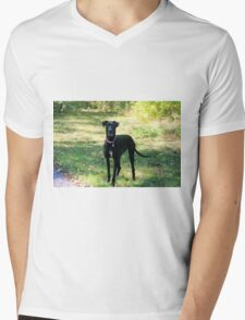 Gemma  Mens V-Neck T-Shirt