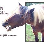 Happy Birthday to You .......... by missmoneypenny
