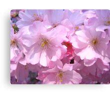 Blossoming Paris Canvas Print