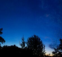 Summer, Night, Sky. by tutulele