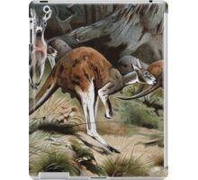 Friedrich Wilhelm Kuhnert A group of Red kangaroos on the move Colour reproduction of Wellcome iPad Case/Skin