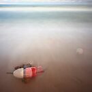 Buoy In Motion by capecodart