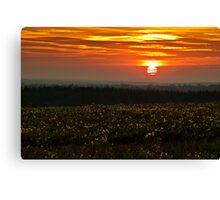 Halnaker Sunset Canvas Print