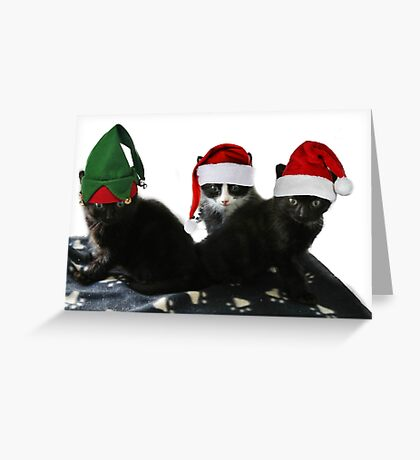 3 Little Kittens Lost Their Mittens Greeting Card