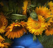 Flower - Sunflower - The suns have risen  by Mike  Savad