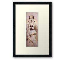 Desert Angels Framed Print