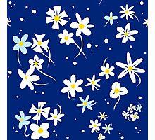 ChibiUsa's Blue Floral Dress Manga Pattern Photographic Print