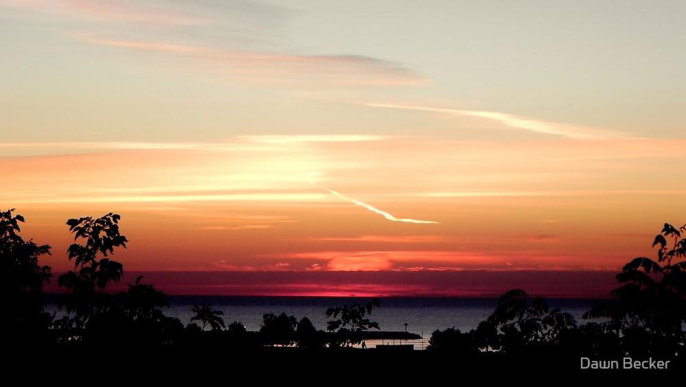 Early morning dawn © by Dawn M. Becker