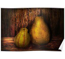 Autumn - Gourd - A pair of squash  Poster