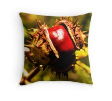 Bonkers Conkers Throw Pillow