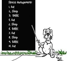 Dachshund Stress Management by Bine