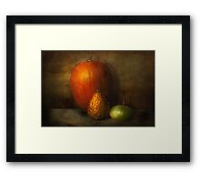 Autumn - Gourd - Melon family  Framed Print