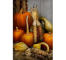 Autumn - Gourd - Pumpkins and Maize  Photographic Print