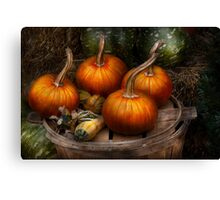Autumn - Gourd - Pumpkins and some other things  Canvas Print