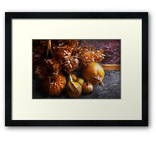 Autumn - Gourd - Still life with Gourds Framed Print