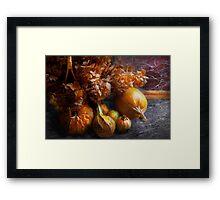 Autumn - Gourd - Still life with Gourds Framed Print