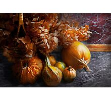 Autumn - Gourd - Still life with Gourds Photographic Print