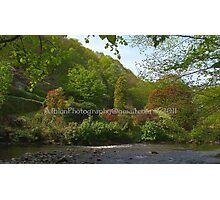 Dehham Mill garden Photographic Print