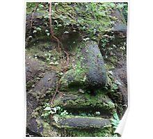 Face of an Olmec Poster