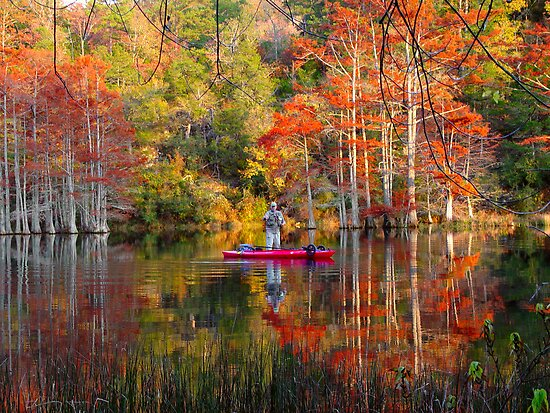 Fishing At Beavers Bend by Carolyn  Fletcher