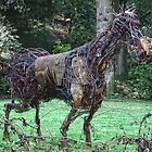Arty Horse by lynn carter