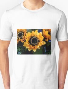 Triple Threat To Catch The Eye T-Shirt