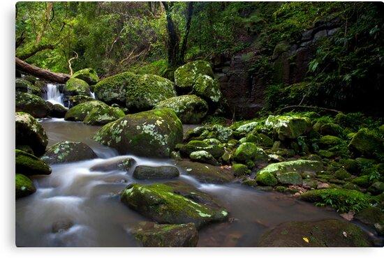 River of Dreams by Malcolm Katon