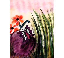 Check out this  #4 butterfly on the rock, watercolor Photographic Print