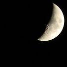 Quarter Moon by Navigator
